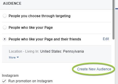 boost post custom audience